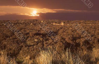 the burren in rural ireland