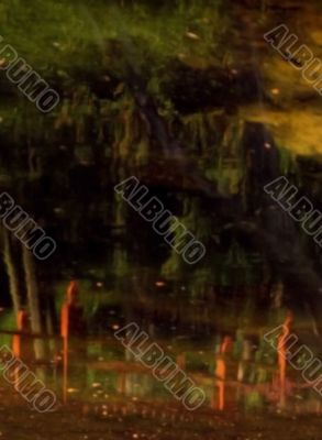 reflection of foot bridge in pond
