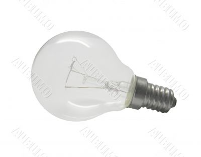 Bulb photo on a white background