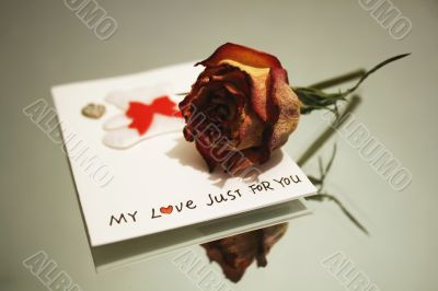 My love just for you