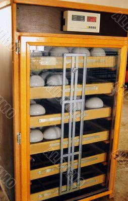 Ostrich egg incubating machine
