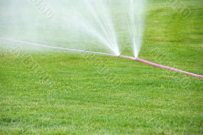 Sprinkling on grass from damaged hose