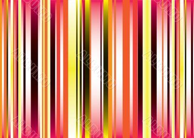 golden vert stripe