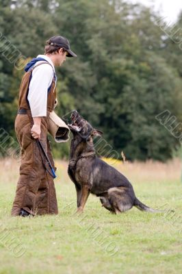 figurant and German shepherd at work