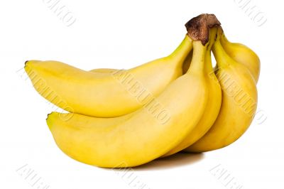 Bunch of bananas. Isolated
