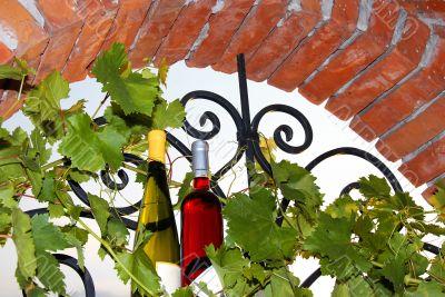 Wine bottles between vine leaves on brick window