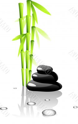 SPA. Bamboo and black stones.