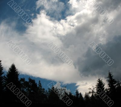 Storm clouds over the forest. Backlight