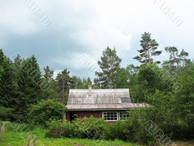 Cottage in the woods. Cloudy day