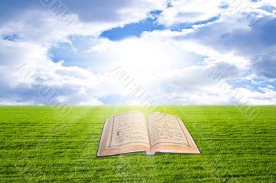 Shine Open Bible