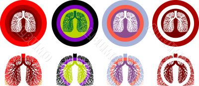 Lung Anatomy, human medical illustration, emblem, scheme, Illnes