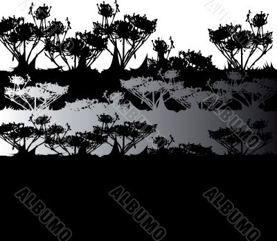 black & white natural background, plant silhouette