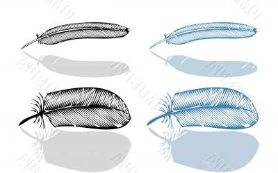 Feather set, vector illustration, fake bird feathers