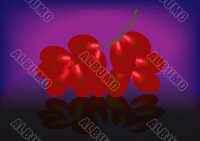 branch ripe juicy grape
