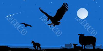 eagles on the hunt