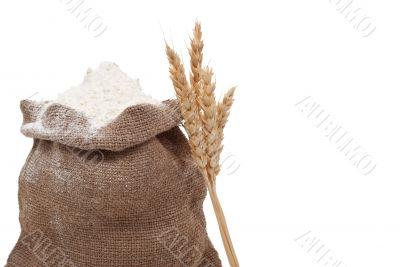Flour and wheat ears