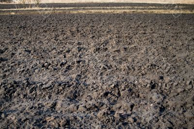 Plowed Field In Spring