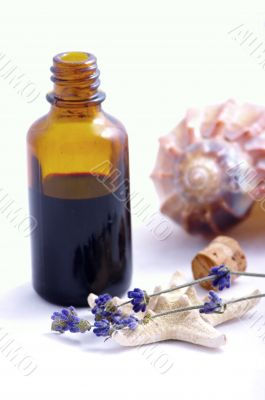Herbal medicine with herbs and marine animals . Isolated white b