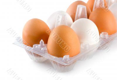 Tray eggs isolated