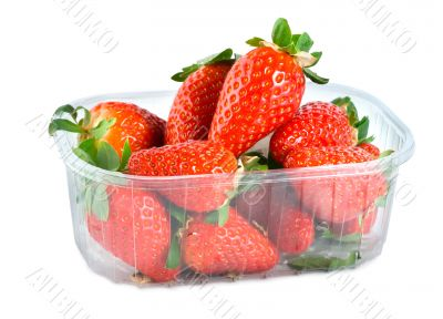 Strawberries in plastic container