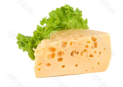 Cheese with lettuce