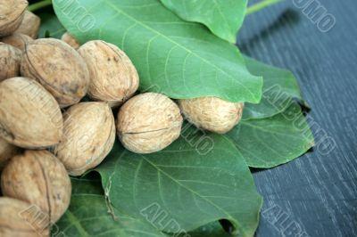 ripe nuts