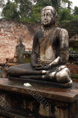 Two Seated Buddhas In The Rain
