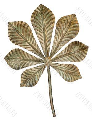 Bronze chestnut leaf.