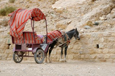 Donkey and Cart at Petra