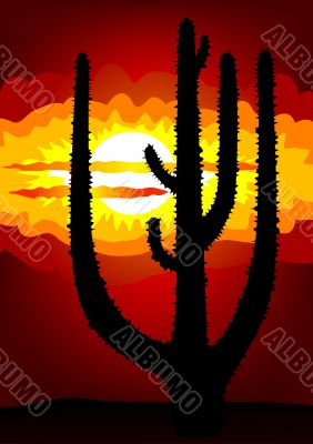 Mexico sunset - vector