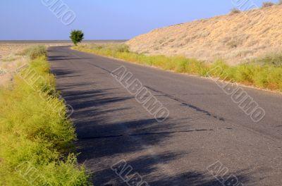 Motor Road Across Savanna