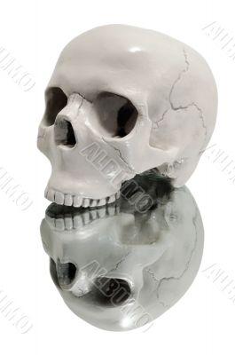 skull on a mirror