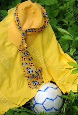 Soccer Fan`s Outfit