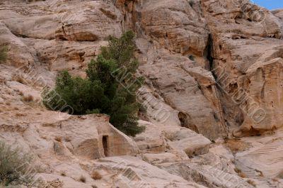 Rocks at Petra in Jordan