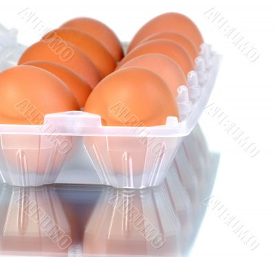 the hen`s eggs in pack