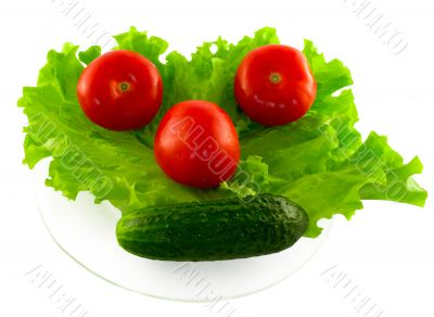 The vegetables lying on the transparent plate