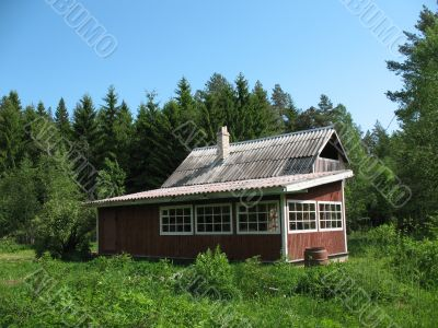 Cottage in the country. Summer. Karelian isthmus