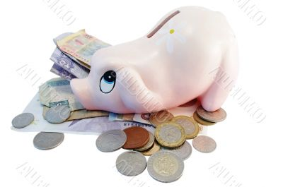 Piggy bank money box with different currency money
