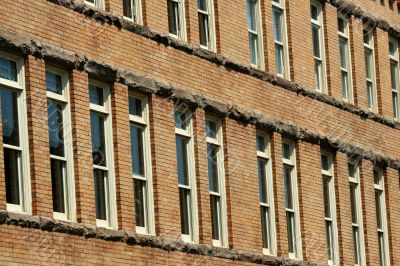 Rows of windows on a building