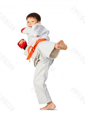 Aikido boy.Martial Arts