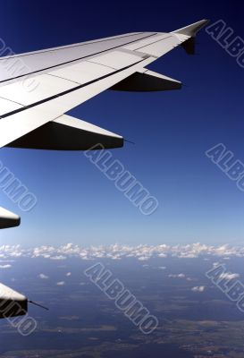 Wing of the plane