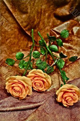 Still life of flowers.