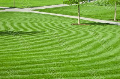 huge green lawn