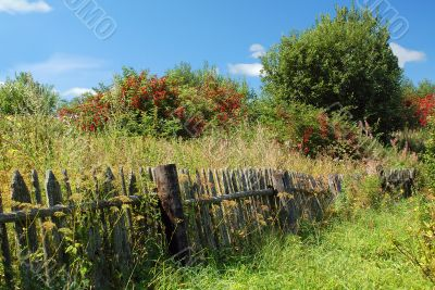 Shabby fence in the Russian Village