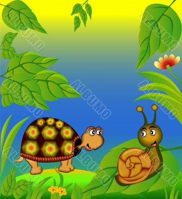 nice terrapin and snail in herb