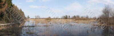 Panorama spring flood