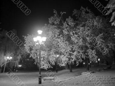 Winter landscape monochrome