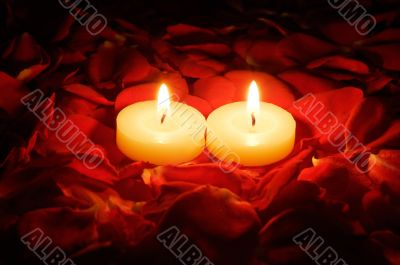 candles on rose petals