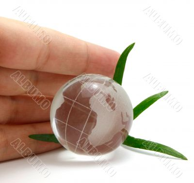 Hand protecting glass globe with leaves