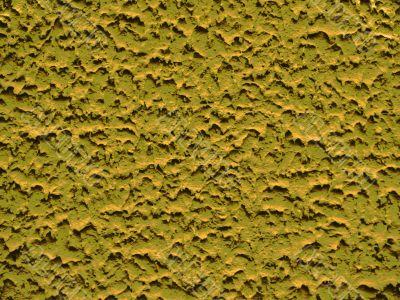 backgraund yellow-green
